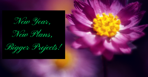 new-year-new-plans